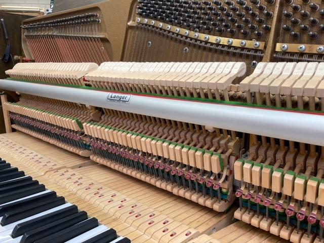 Fazer piano Friesland