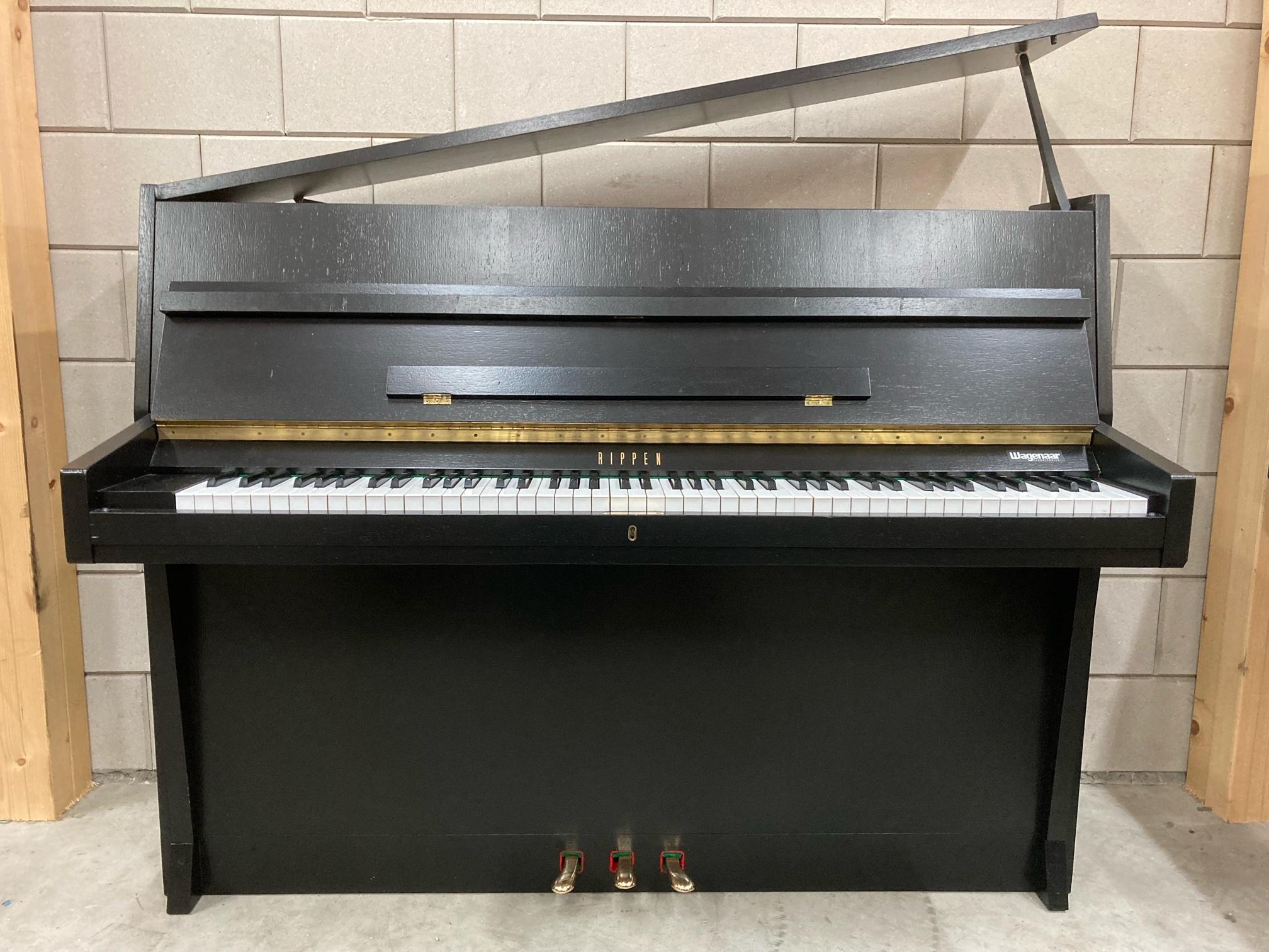 Rippen piano Friesland